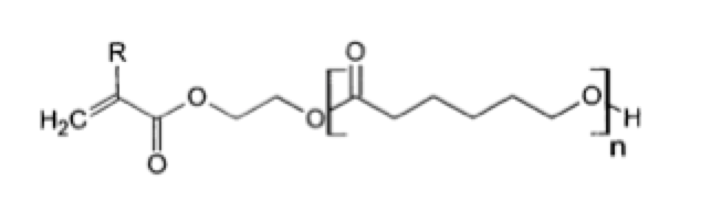 modified-caprolactone-monomer