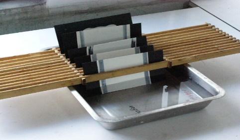blister resistant test panels.jpg