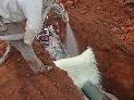 rigid-polyurethane-foam-construction