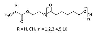 caprolactone-modified-methacrylate-monomers